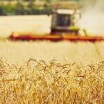 Kwartaalrapportage over het Gemeenschappelijk Landbouwbeleid