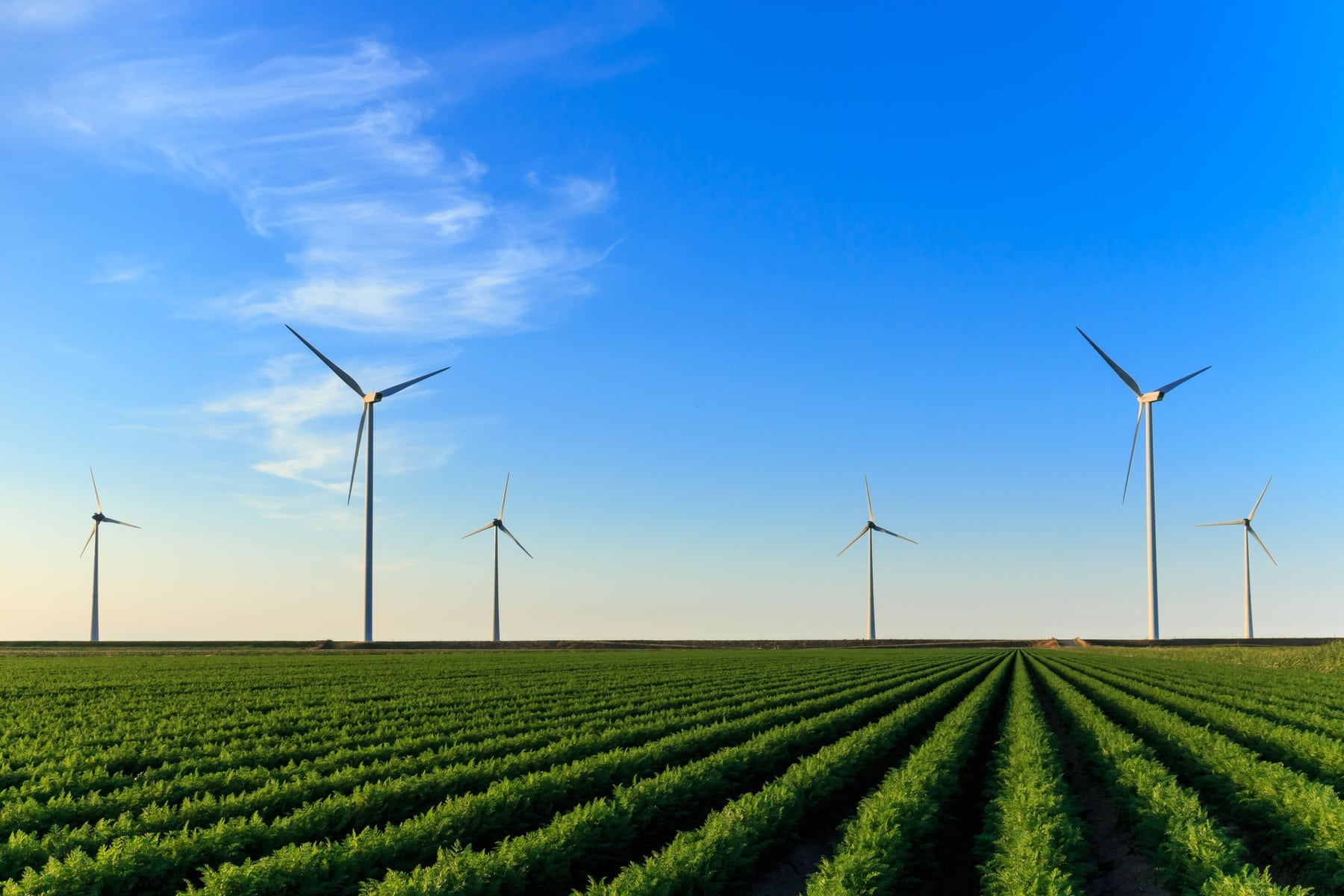 Europese Green Deal: De weg naar klimaatneutraliteit
