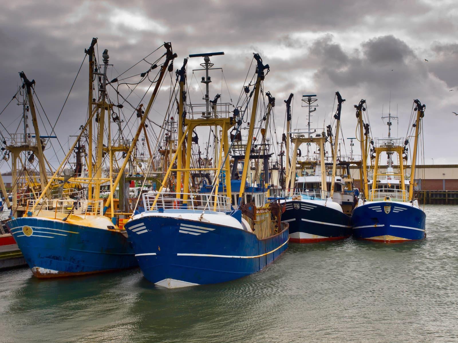 Voorstel verordening inzake het Europees Fonds voor maritieme zaken en visserij