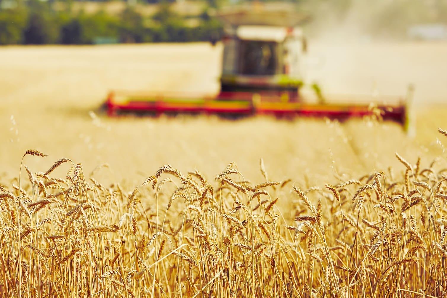 De Europese Commissie vraagt feedback voor actieplan biologische landbouw