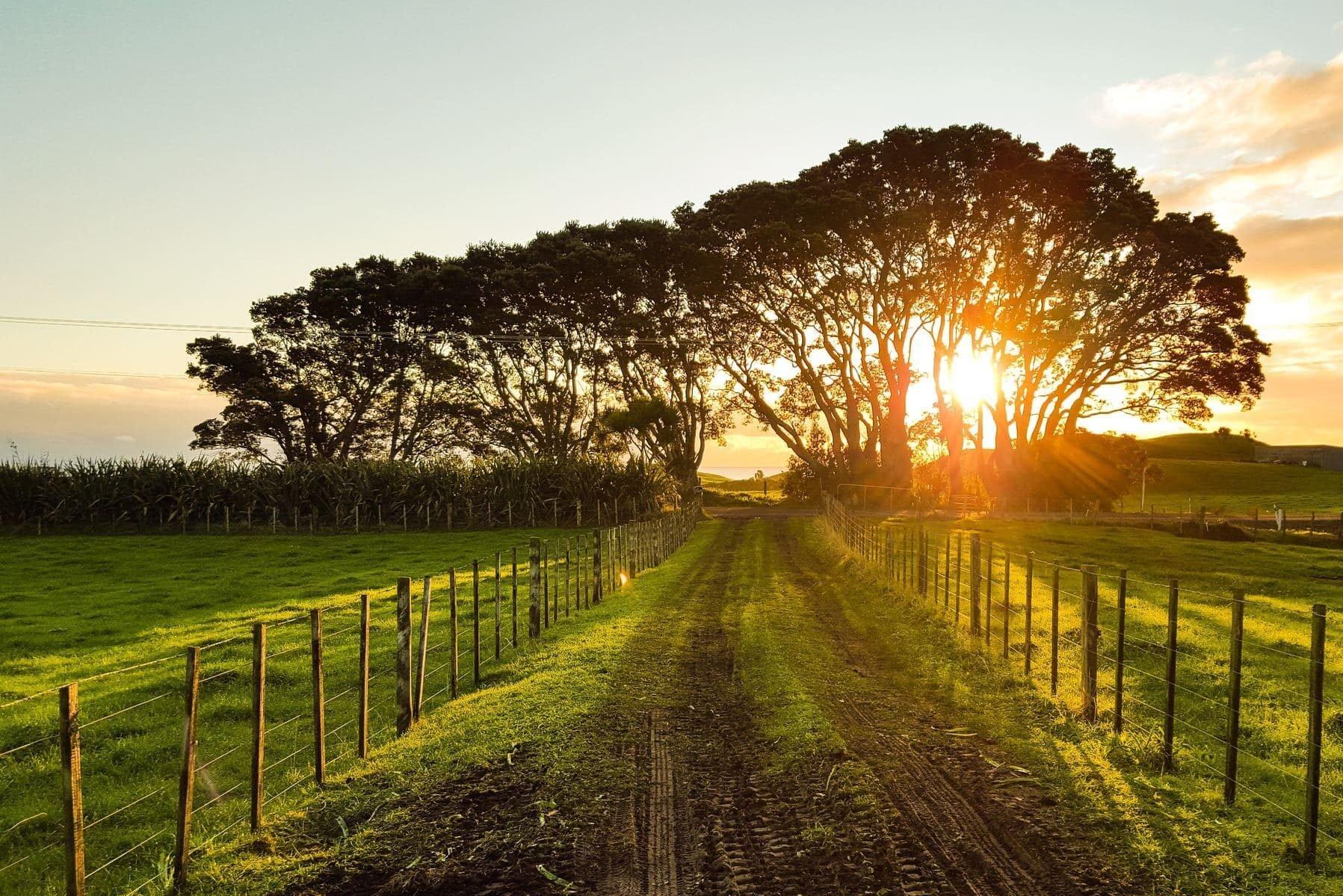 Werkgroep Green Deal Going Local presenteert routekaart voor 2021